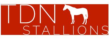 TDN Stallions