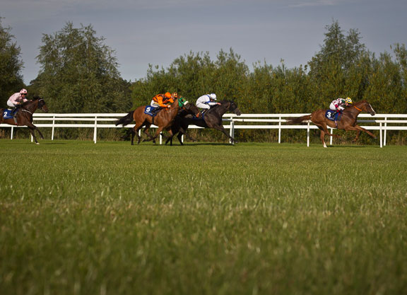 Racing At Leopardstown And Limerick