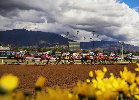 TOC and TSG Announce Agreement; Santa Anita Racing to Resume Mar. 29