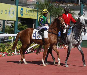 sha tin race results today