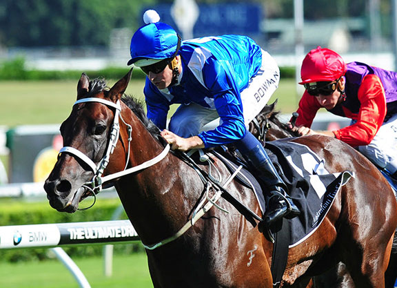 Glamour Mare Winx All Class In Chipping Norton
