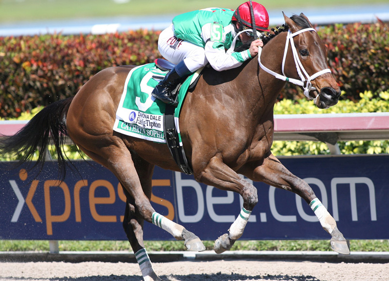 Cathryn Sophia with Javier Castellano winning The Fasig Tipton Davona Dale Stakes at Gulfstream Park 02.27.2016.