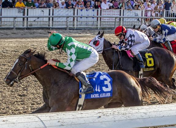 Route du Kentucky Derby/Kentucky Oaks 2016 Venusssssss