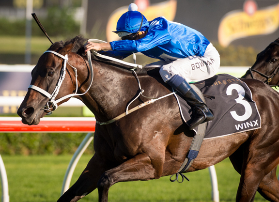 Winx To Trial At Warwick On Friday