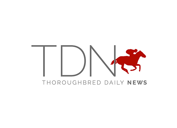 foldem thoroughbred daily news