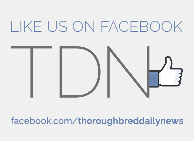 TDN Facebook (new logo) 5/26/16