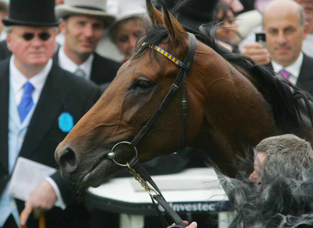 Investec Derby. Winner Sea The Stars.