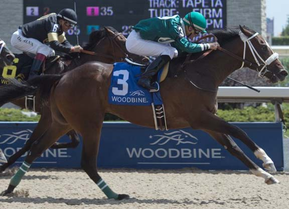 woodbine horse racing results