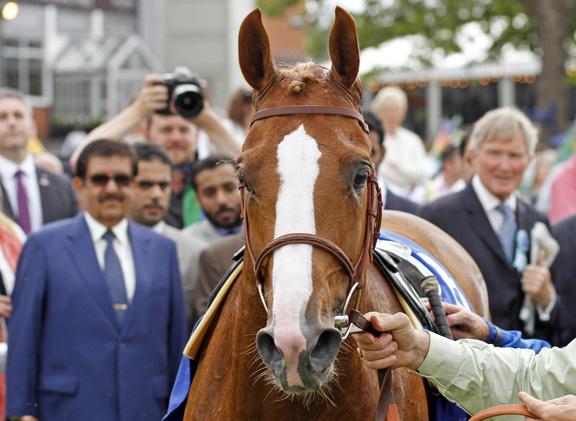 Arabian World Series A Growing Force