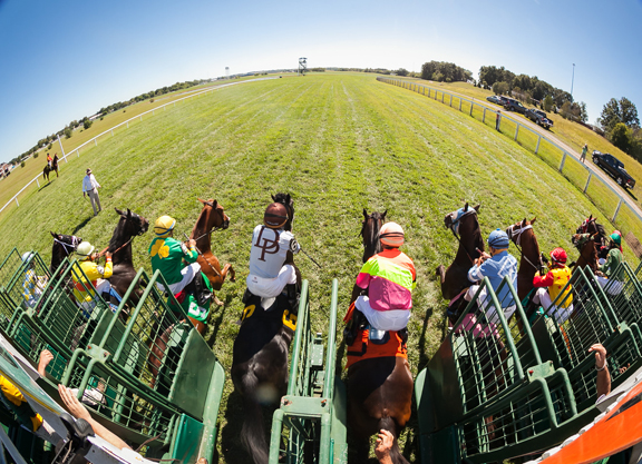 Racing Commission Approves New Ky Downs Owners