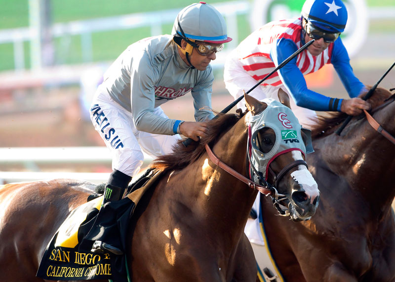 Racing: Kentucky Derby victor Nyquist out of Breeders' Cup Classic