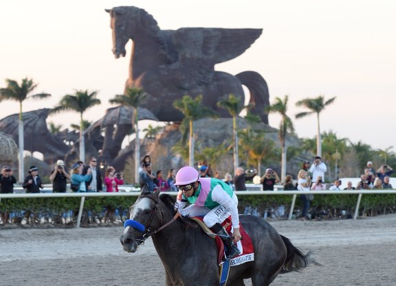 Arrogate to Stand for $50,000 in 2020