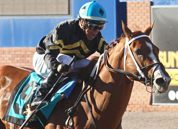 'Hence' wins Sunland Derby following local horse 'Conquest Mo Money'