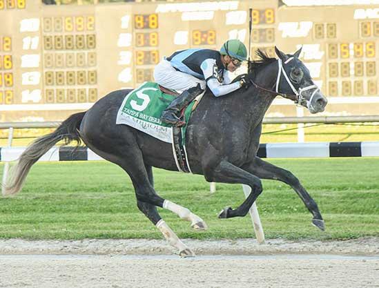 WinStar TDN Derby Top Twelve for Mar. 14