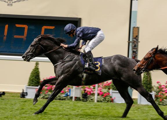 Harry Angel gets his revenge on Caravaggio at Newmarket