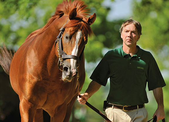 City Zip Filly Scores on Debut at Belmont