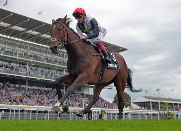 Image result for cracksman horse