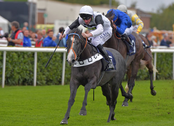 Guineas Second Aims for Qatar Derby