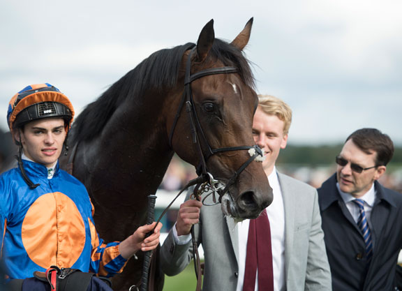 Seahenge, Third in the Dewhurst, Sires First Foal