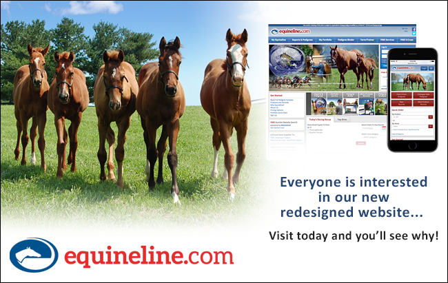 Equineline – 306 – 10/21/17