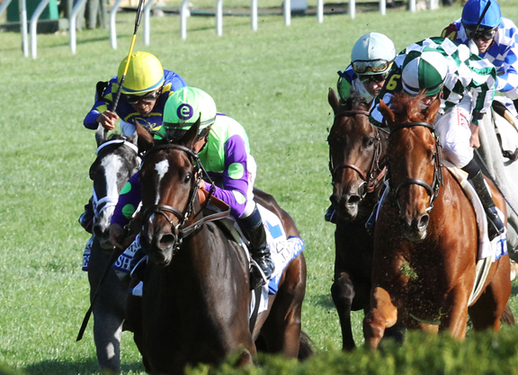 Image result for rushing fall horse