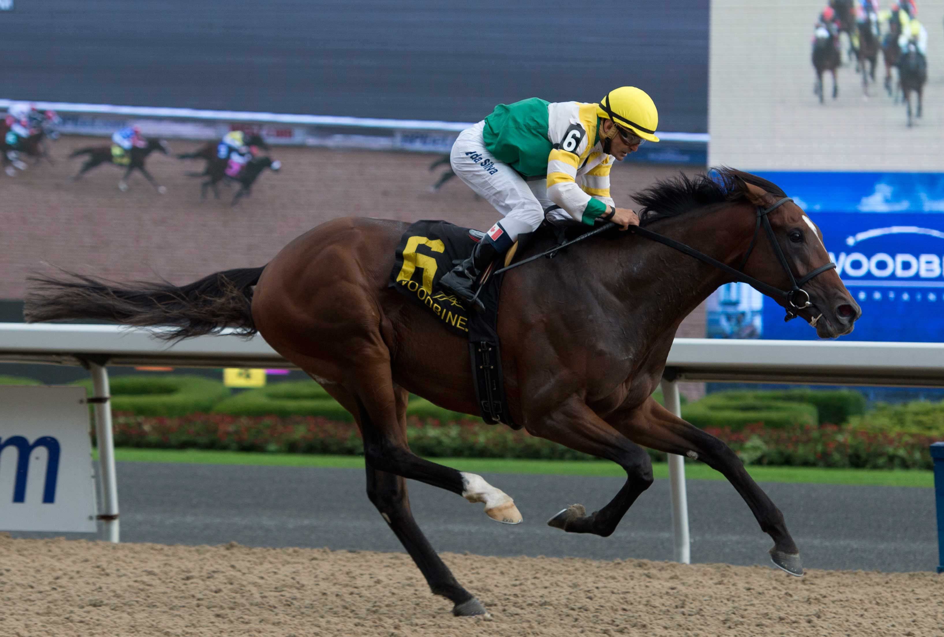 Tiznow's Tiz a Slam Bests Holy Helena in Ontario Derby