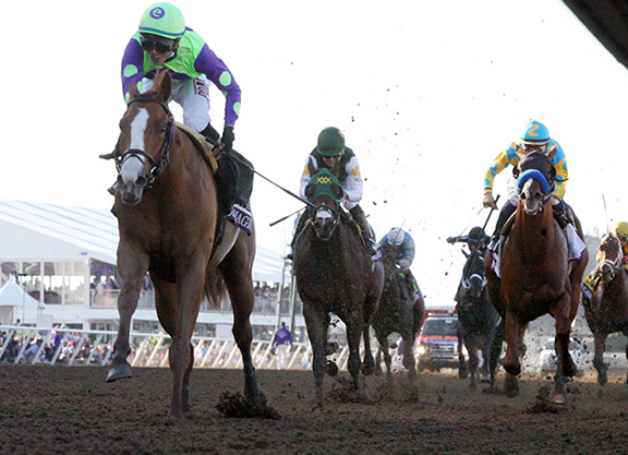 Magic Continues For E Five As Curlin Colt Romps In