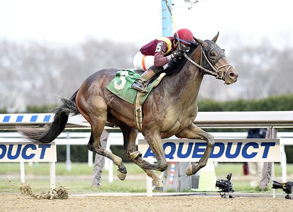 The Inaugural TDN Derby Top 12, Presented by WinStar Farm