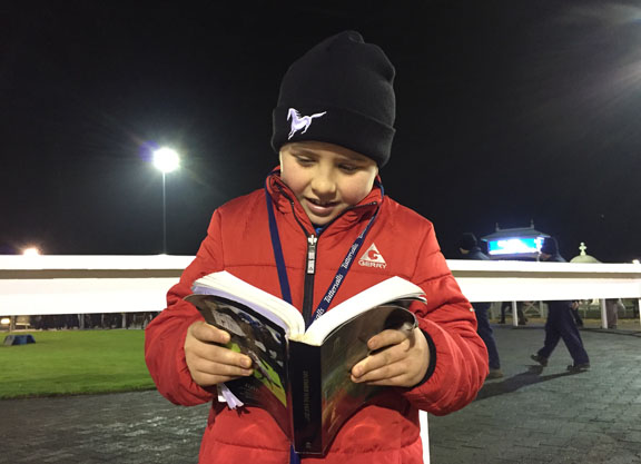 Tattersalls' Foal Sale Concludes In Strong Fashion