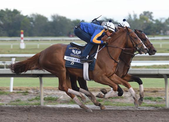 Pegasus Contenders Put in Final Breezes