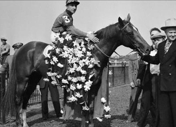 The Influence of Lady Pitt and Whirlaway