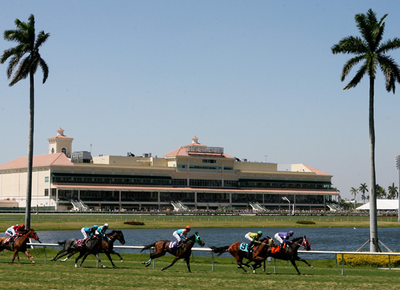 Shocker–Gulfstream Races Go Off at Post Time