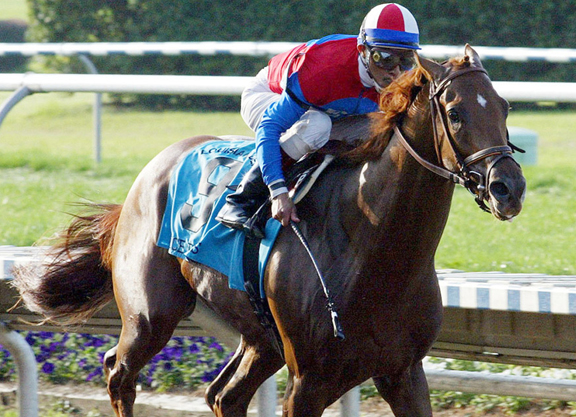 Shared News Archives - Page 298 of 1128 - TDN | Thoroughbred