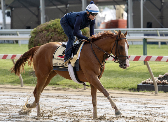 Preakness Stakes lineup, updated odds and picks: Everything you need to know