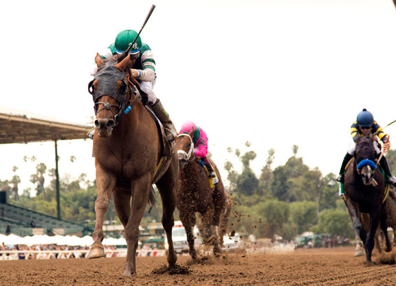 Accelerate Leads Home Lookin At Lucky Exacta in Gold Cup at Santa Anita