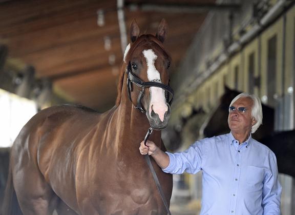 So Which Baffert Horse Will Win the Kentucky Derby?