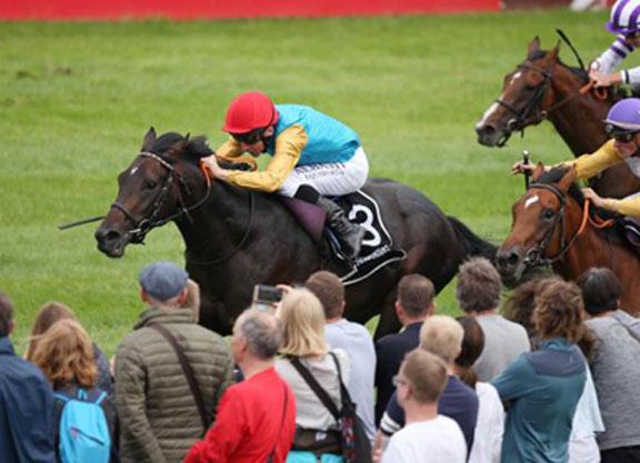 deutsches galopp derby