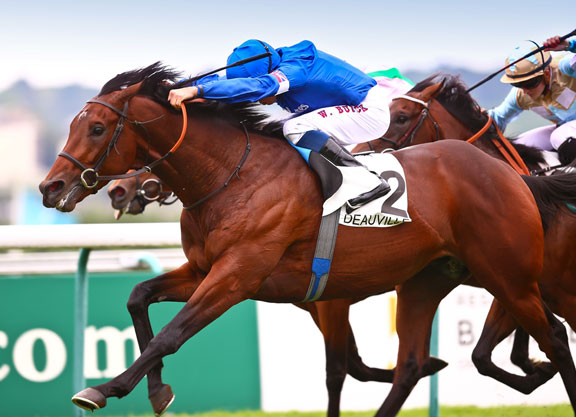 Dubawi's Al Hilalee Stays Perfect At Deauville