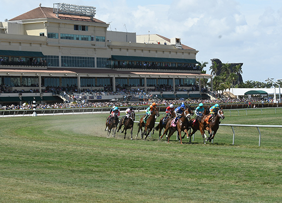 Pegasus World Cup Adds Grade I Turf Race