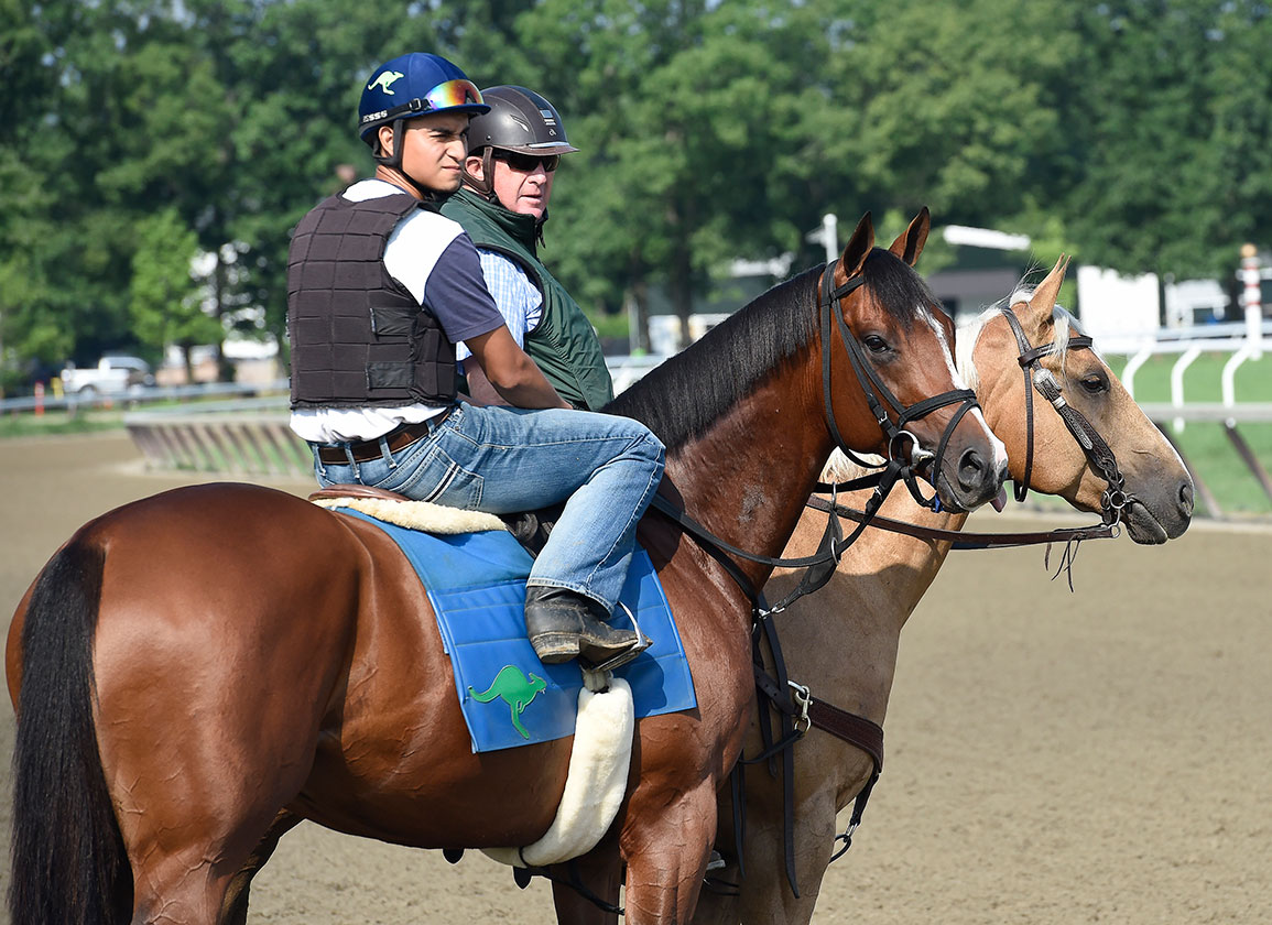 Oscar Performance Favored from Gate 11 in Arlington Million