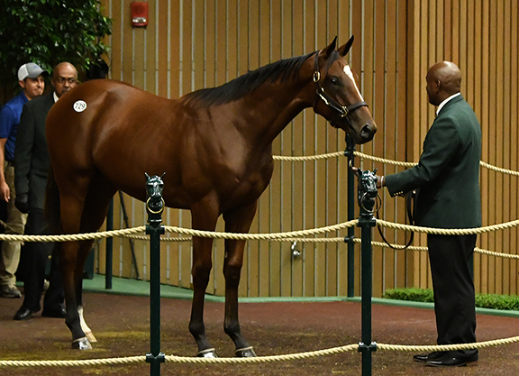 'Pharoah' Tops Strong Third Session of KEESEP