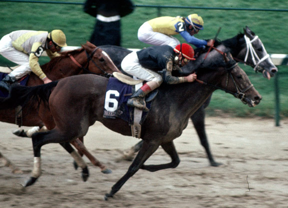 Ten Best Horses Who Lost Out on Horse of the YearTen Best