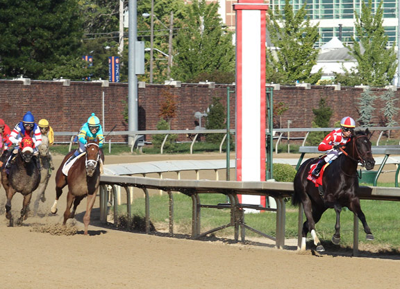Alternation S Serengeti Empress Puts On A Show In The