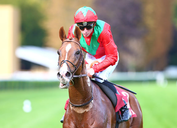 Fabre Pair Bound For Breeders Cup Turffabre Pair Bound