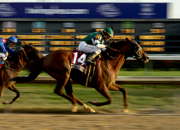 Accelerate Grants Sadler First Breeders' Cup Win