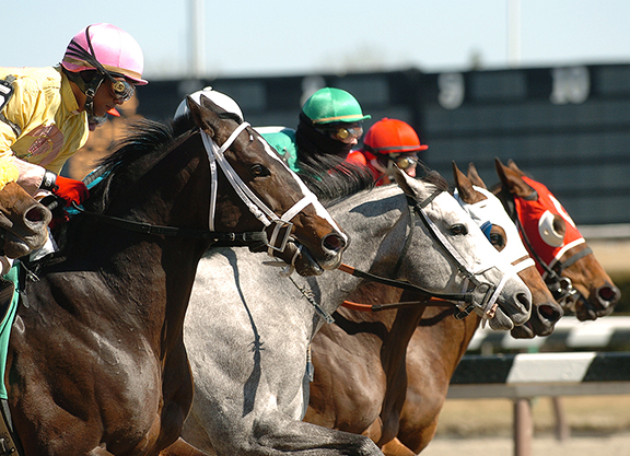 Hearing on Horseracing Integrity Act Next Tuesday