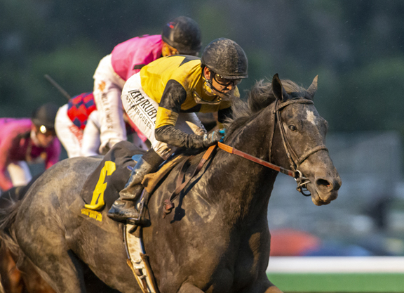 The Week In Review: Transformation of TVG Seems
