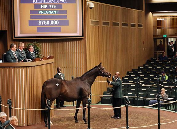 Market Remains Strong at Keeneland January