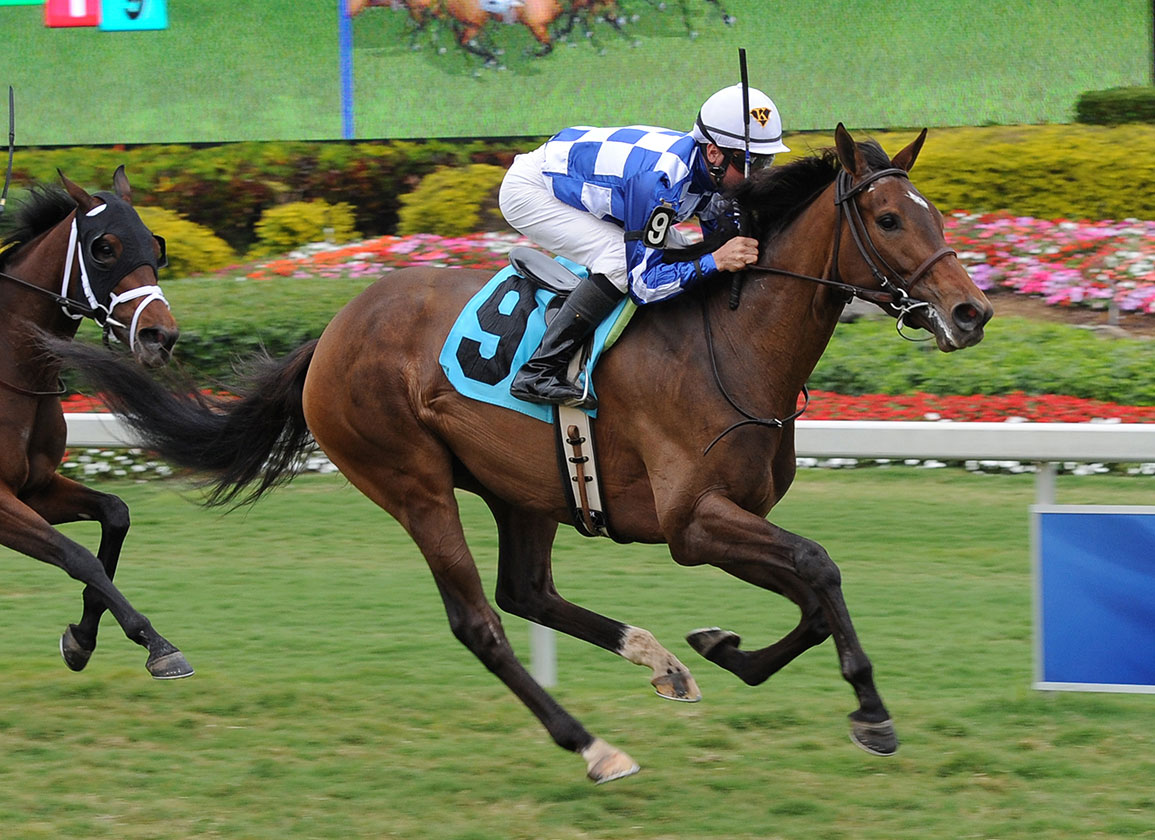 Insights on Today's Racing: Jan. 24, 2019