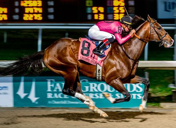War Front Colt Runs to the Money in Lecomte
